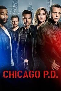 Chicago P.D. S06E20