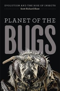 Planet of the Bugs: Evolution and the Rise of Insects (repost)