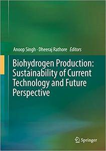 Biohydrogen Production: Sustainability of Current Technology and Future Perspective (Repost)