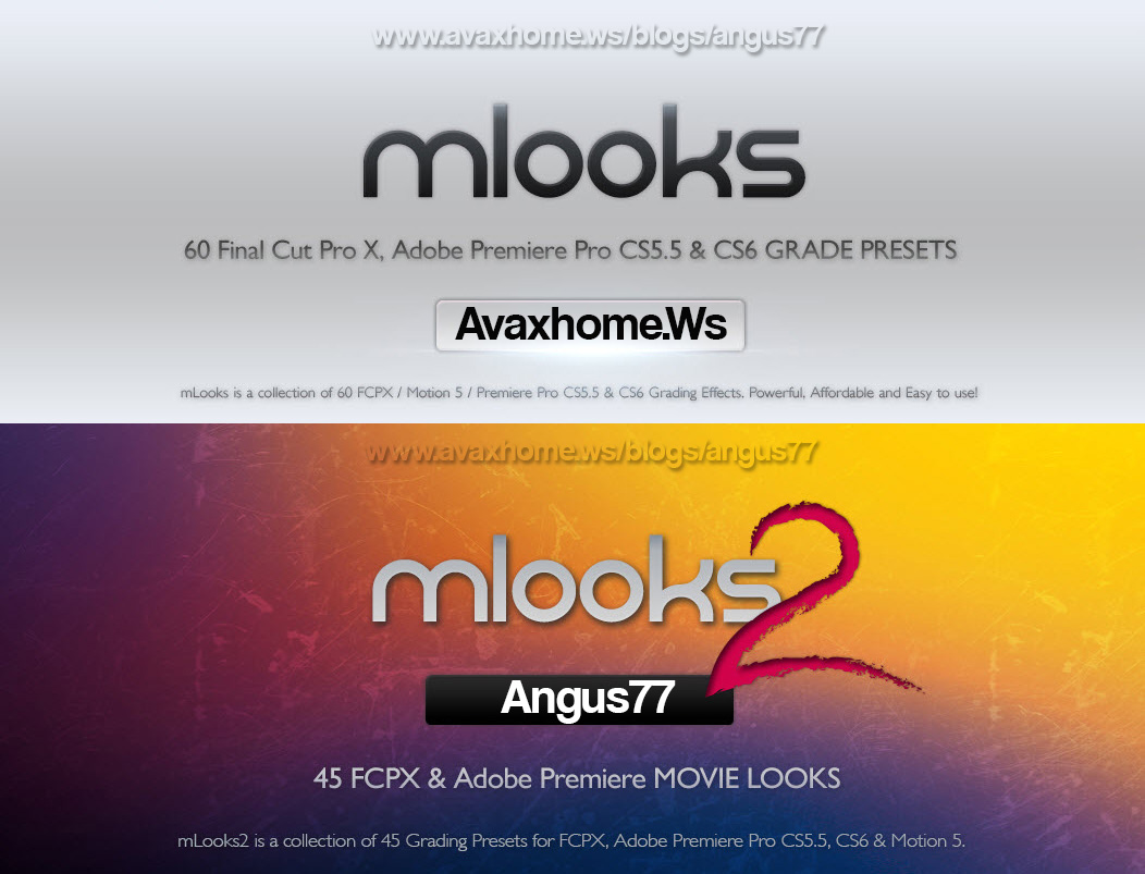 mLooks 1 & 2 - Presets Collection for Final Cut Pro X
