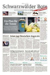Schwarzwälder Bote Hechingen - 12. Juli 2019