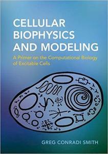 Cellular Biophysics and Modeling: A Primer on the Computational Biology of Excitable Cells