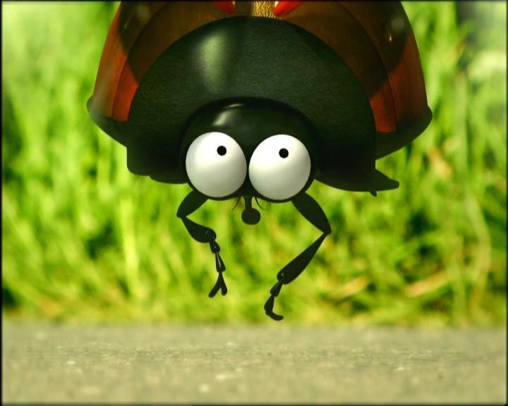 Смешные картинки про жуков, про