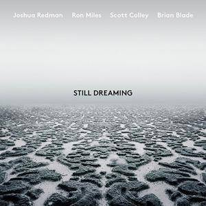 Joshua Redman - Still Dreaming (feat. Ron Miles, Scott Colley & Brian Blade) (2018)