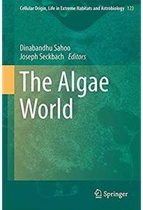 The Algae World [Repost]