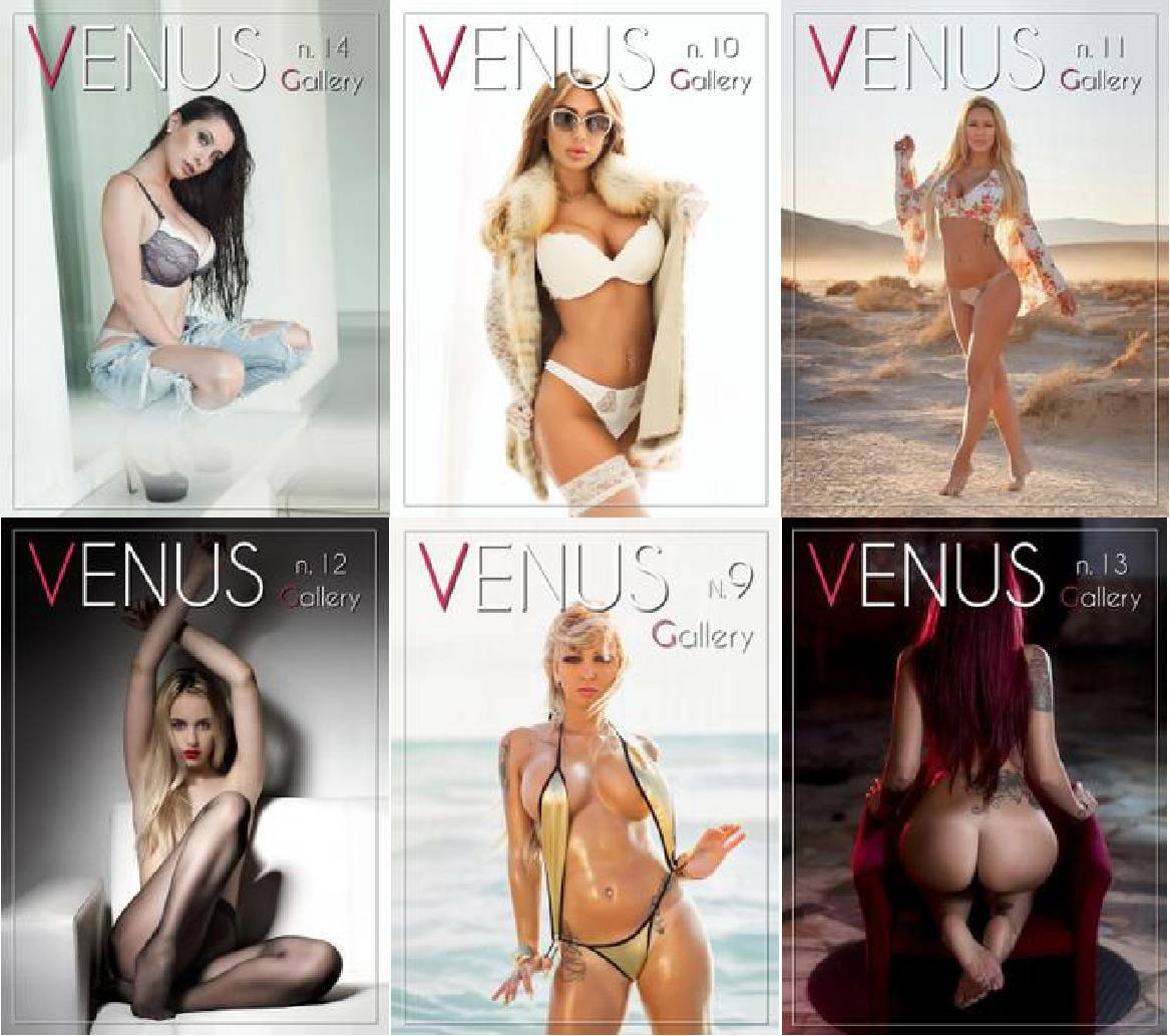 Venus Gallery - Full Year 2017 Collection