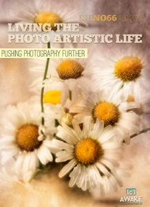 Living The Photo Artistic Life - August 2020