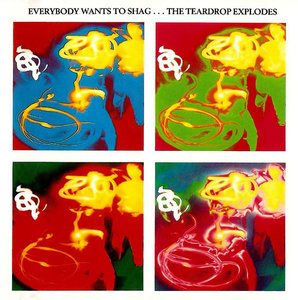 The Teardrop Explodes - Everybody Wants to Shag... (1990)