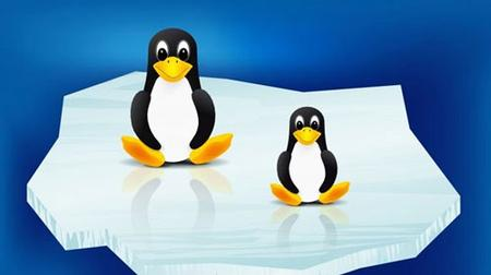 UNIX and Linux Operating System - Beginner & Advanced