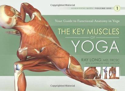 Key Muscles of Yoga: Your Guide to Functional Anatomy in Yoga