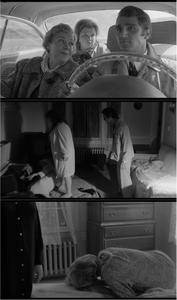The Honeymoon Killers (1970) [The Criterion Collection]