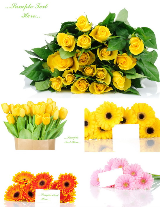 Flowers with Greeting Cards