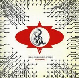 Afro Celt Sound System  - Anatomic (2005)