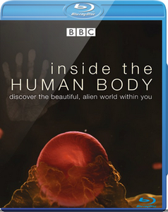 Inside the Human Body (2011)