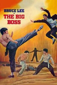 The Big Boss (1971)