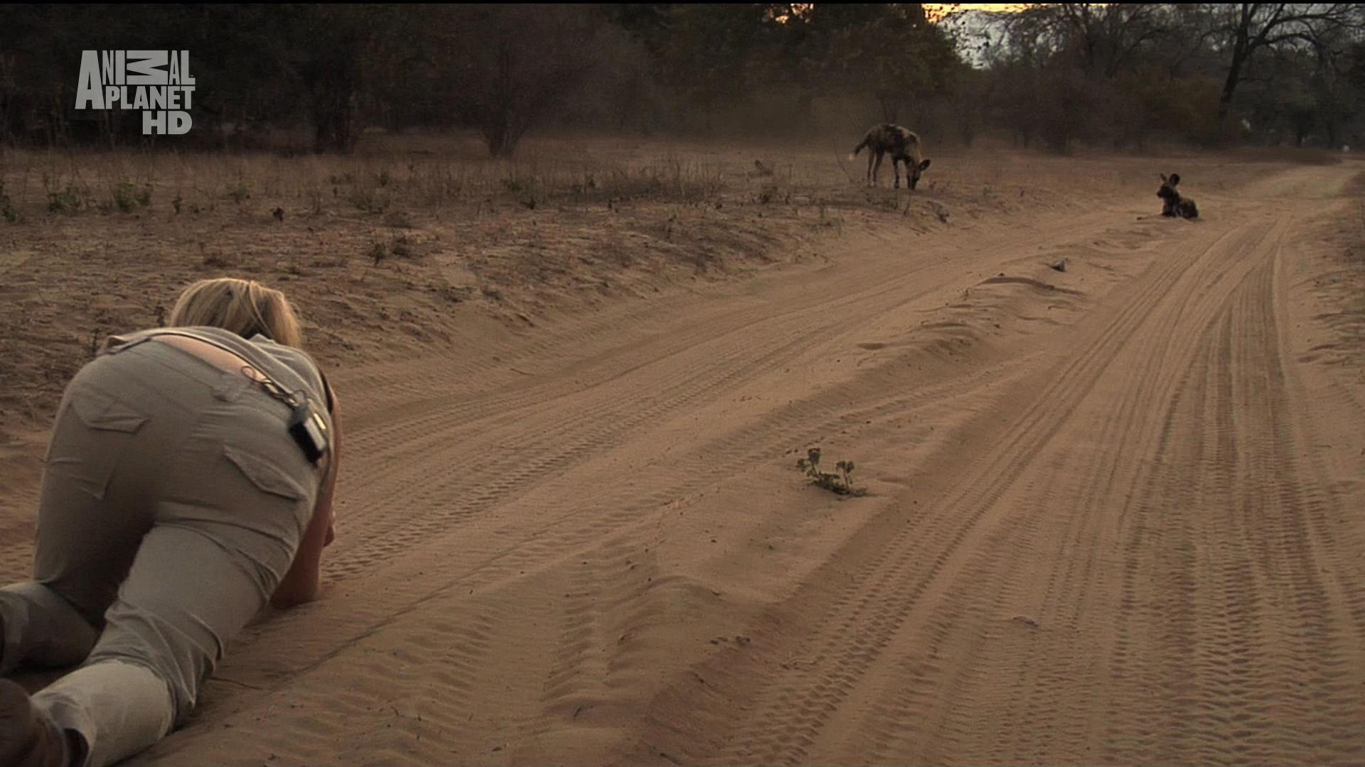 Karina - Wild on Safari - S01E02