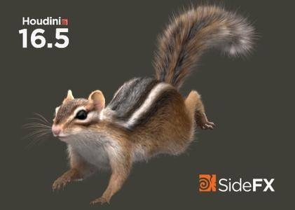SideFx Houdini FX 16 5 268 / AvaxHome