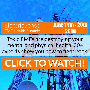 EMF Health Summit 2019