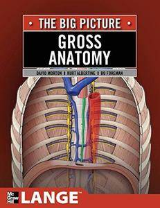 Gross Anatomy: The Big Picture (Lange The Big Picture) (Repost)
