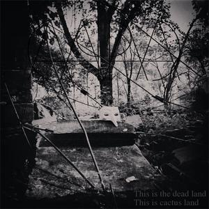 Capa - This Is The Dead Land, This Is Cactus Land (2013)