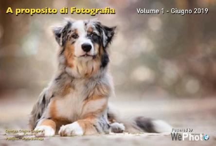 WePhoto A proposito di fotografia - Volume 1 Giugno 2019