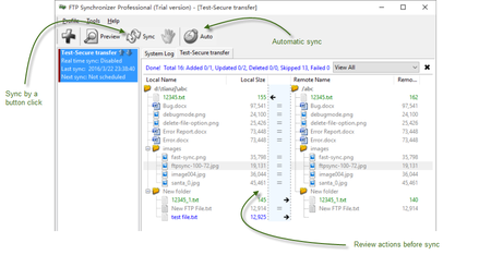 FTP Synchronizer Professional 7.3.25.1263 Multilingual