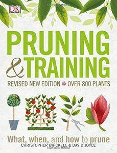 Pruning and Training: What, When, and How to Prune (Revised Edition)