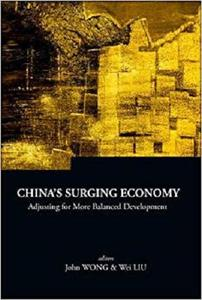 China's Surging Economy: Adjusting for More Balanced Development (Series on Contemporary China)