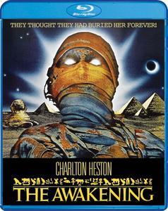 The Awakening (1980)