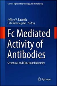 Fc Mediated Activity of Antibodies: Structural and Functional Diversity