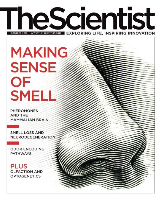 The Scientist - October 2013