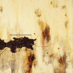 Nine Inch Nails - The Downward Spiral (Definitive Edition) (1994/2017) [TR24][OF]