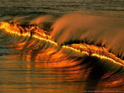Extraordinary High resolution  Images Of Nature P5
