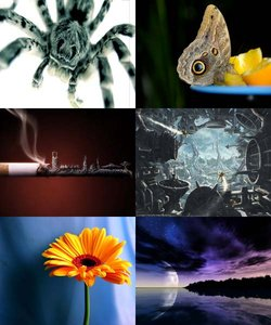 The Best Wallpapers pack №27