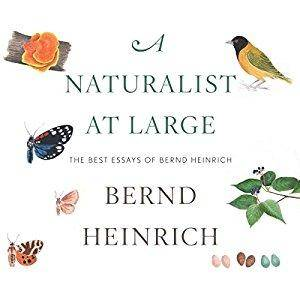 A Naturalist at Large: The Best Essays of Bernd Heinrich [Audiobook]