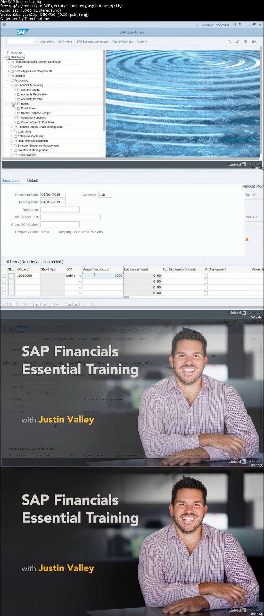 SAP Financials Essential Training