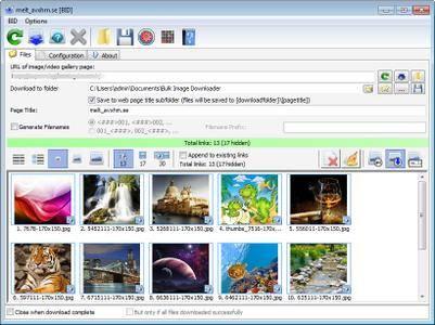 Bulk Image Downloader 5.29.0 Multilingual