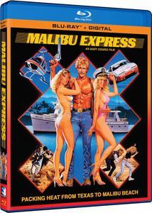 Malibu Express (1985) + Extra
