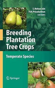 Breeding Plantation Tree Crops: Temperate Species