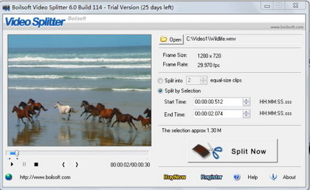 Boilsoft Video Splitter 6.33 Build 155