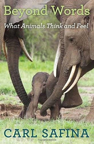 Beyond Words: What Animals Think and Feel(Repost)