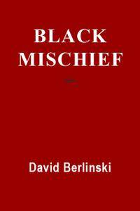 Black Mischief: Language, Life, Logic, Luck, 2nd Edition