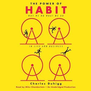 The Power of Habit: Why We Do What We Do in Life and Business (Audiobook, repost)
