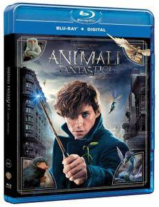 Animali fantastici e dove trovarli / Fantastic Beasts and Where to Find Them (2016)