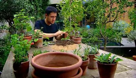 BBC - Grow Your Own Drugs (Series 2) (2011)