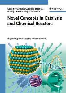 Novel Concepts in Catalysis and Chemical Reactors Improving the Efficiency for the Future