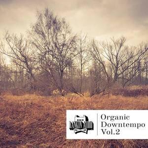 Rankin Audio Organic Downtempo Vol 2 WAV