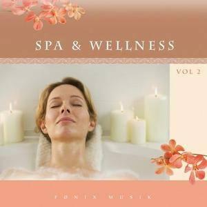 V.A. - Spa & Wellness vol. 2 (2006)