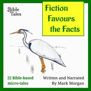 «Fiction Favours the Facts» by Mark Morgan