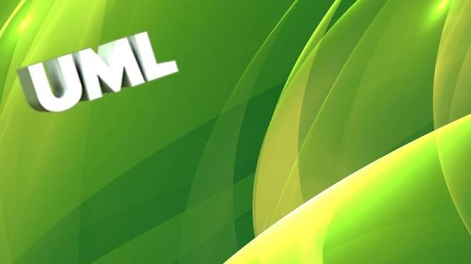 Video2Brain - UML: Anwendungsfall-, Objekt- und Sequenzdiagramme UML